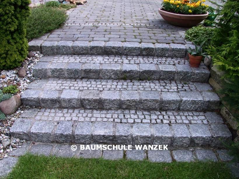Baumschule Wanzek Gartengestaltung Gestaltungsbeispiele