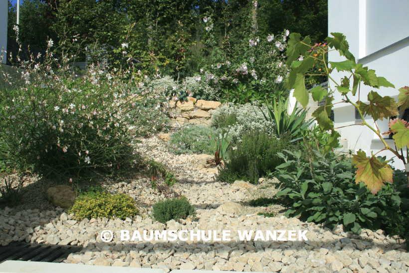 mediterraner steingarten – proxyagent, Garten ideen